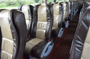 buses for large group trips