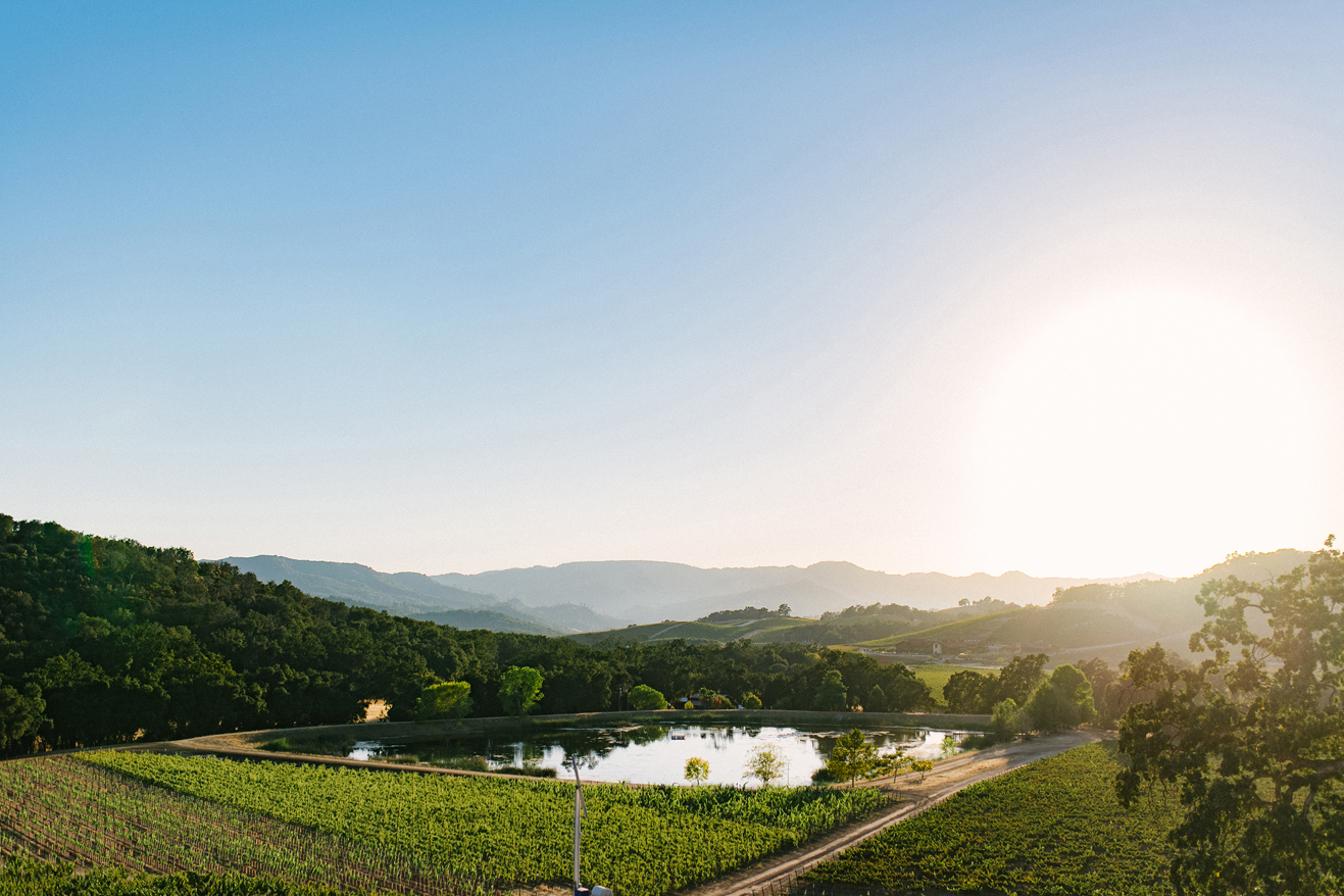 wineries with the best views in paso robles