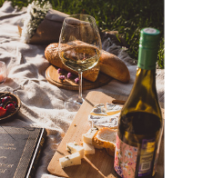 wine tasting tour wineries in paso